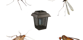 What are insect killers and how do they work