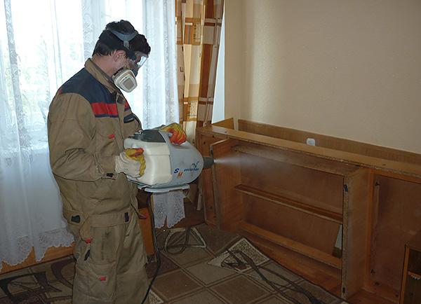 Κλήση ελέγχου των παρασίτων θεωρείται ο πιο αποτελεσματικός και γρήγορος τρόπος για να απαλλαγούμε από έντομα στο σπίτι.