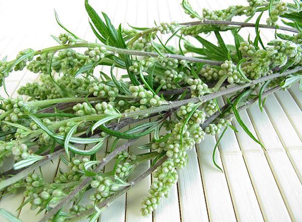 Οι λαϊκές θεραπείες για κροκιδωτά είναι ως επί το πλείστον σημαντικά κατώτερες ως προς την αποτελεσματικότητα έναντι των σύγχρονων εντομοκτόνων παρασκευασμάτων.