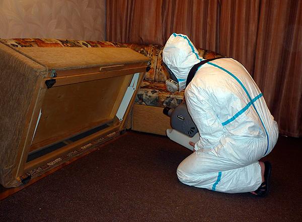 Εάν πολλά διαμερίσματα έχουν μολυνθεί από κροκοδείκτες ταυτόχρονα, τότε συνιστάται να καλέσετε μια υπηρεσία απολύμανσης προκειμένου να καταστρέψετε τα παράσιτα ταυτόχρονα σε όλα τα δωμάτια.