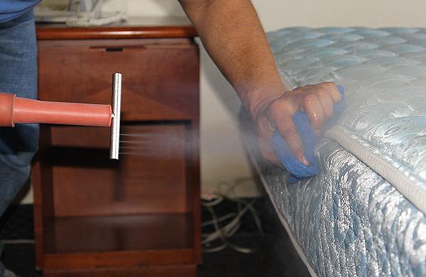 Astăzi, există multe metode de a trata păduchii, dar nu toate sunt la fel de eficiente ...