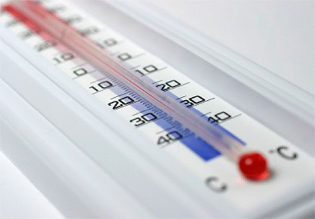 Temperature treatment from bedbugs: freezing or heat treatment (or steam)