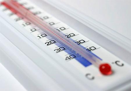 벌래에서 온도 처리 : 냉동 또는 열처리 (또는 증기)