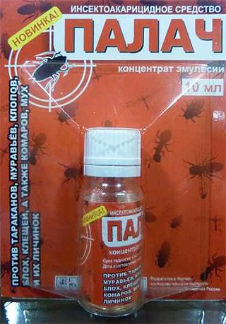 Remedie voor binnenlandse bugs Beul