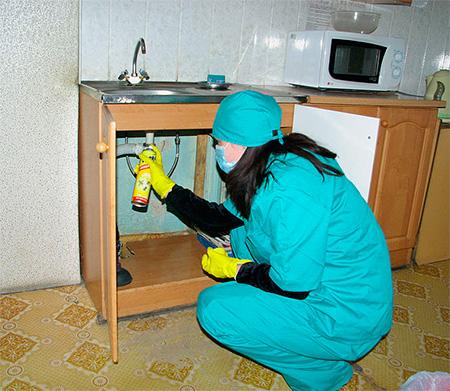 ต้องฉีดพ่นสารเคมีในพื้นที่ที่แมลงสามารถสะสมได้