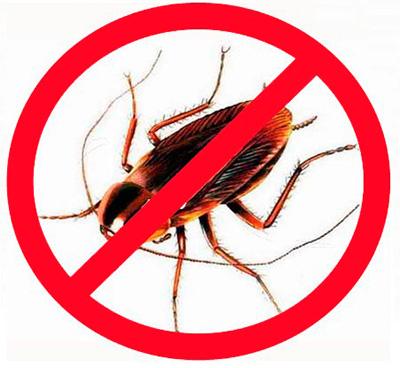 การใช้ยาฆ่าแมลงที่ทันสมัย