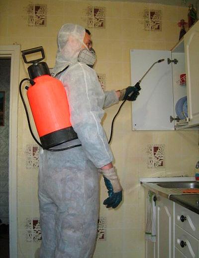 عامل مكافحة الآفات يعامل الشقة من الصراصير
