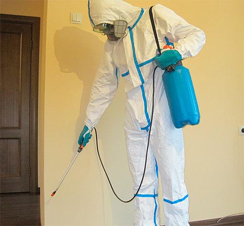 Disinsector يعامل مسطح من الحشرات