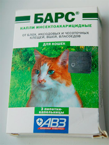 على سبيل المثال: قطرات برغوث للقطط القضبان