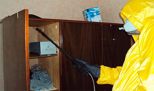 Disinsector يعامل الشقة من الصراصير