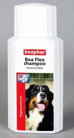 الشامبو برغوث Beaphar مكلفة ، ولكنها فعالة وآمنة للكلاب