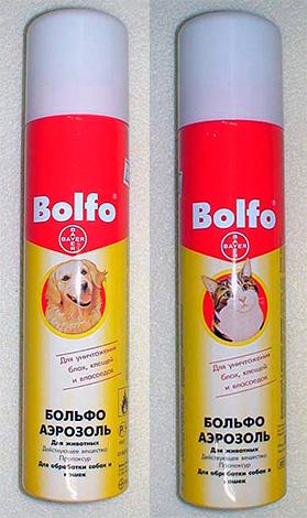 علاج الهباء للبراغيث Bolfo