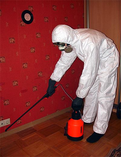 Ο απολυμαντής επεξεργάζεται το διαμέρισμα