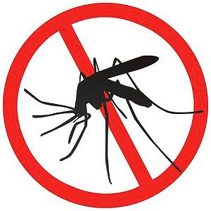 سوف تعمل مبيد الموجات فوق الصوتية على البعوض ، ولكن بالكاد على النمل