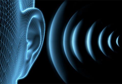 لا تسمع الأذن البشرية إشارات الموجات فوق الصوتية للمبيد