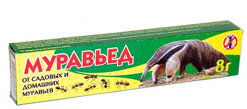هلام Anteater من الحديقة والنمل المحلي