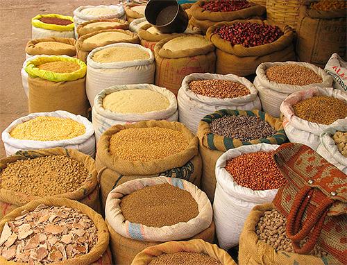 جميع أنواع الحبوب - الغذاء العثة الغذائية المفضلة