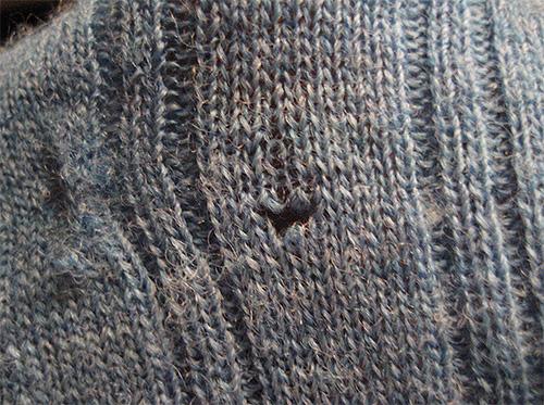 스웨터의이 구멍은 옷 나방의 애벌레를 떠났다.