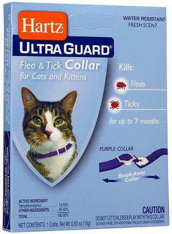 قبل استخدام طوق البراغيث ، يجب عليك التحقق من الجلد القط للحساسية للمبيدات الحشرية التي يحتوي عليها.