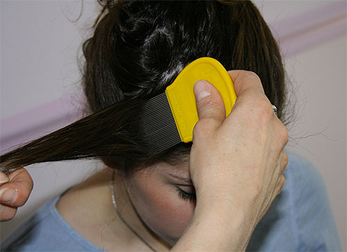 If you choose a mechanical method of removing nits, you need to comb your hair very carefully, strand by strand