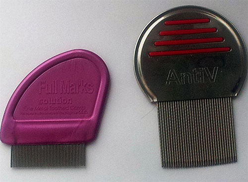 The photo shows examples of special combs for combing lice and nits.