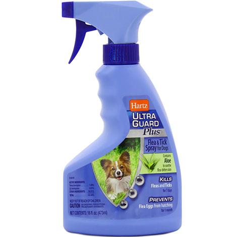بخاخات برغوث هارتز هي فعالة جدا ، ولكن يجب استخدامها بحذر شديد عند التعامل مع الكلاب والقطط