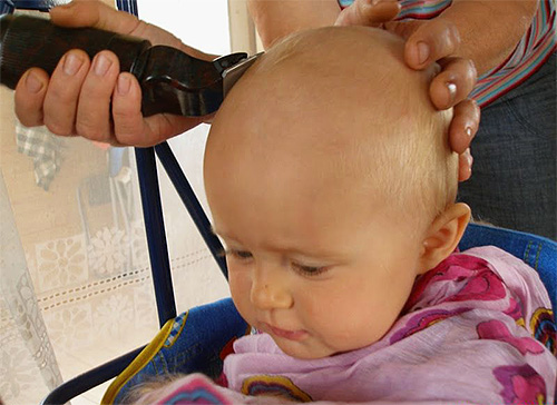Shaving lice-infected areas of the body is the best way to get rid of lice.