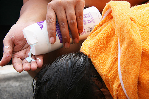 Pediculicidal shampoos - one of the most convenient in the use of drugs for lice.