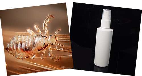 Many lice sprays are quite effective against parasites, and some of them do not contain insecticides at all.
