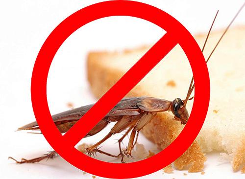 قبل بداية تدمير الحشرات في الغرفة من المفيد التعرف على ميزات هذا الإجراء ، بحيث كانت فعالة حقا وآمنة لسكان الشقة.
