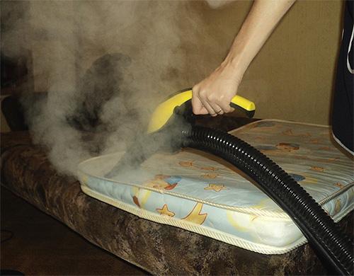 عندما تكون درجة حرارة البخار حوالي 100 درجة ، فإن الحشرات سوف تموت حتى في الطيات العميقة وتلف المرتبة.