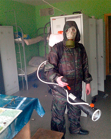 Calling a pest control service is about 10 times more expensive than killing cockroaches with a smoke bomb.