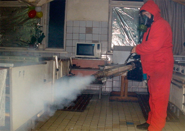 One such procedure of processing an apartment with the help of a hot fog generator will cost several thousand rubles.