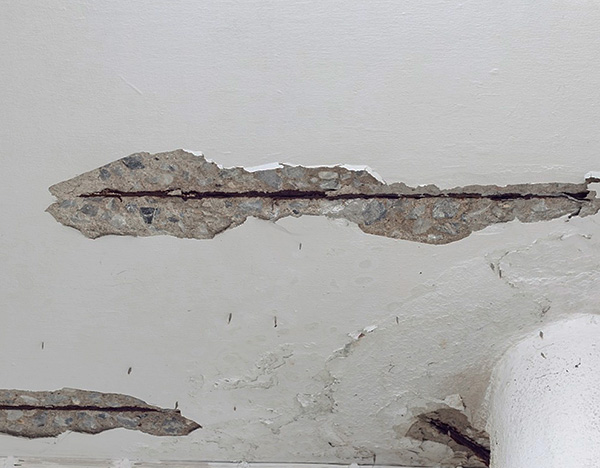 Cracks in the ceiling, walls or floor can also be the path through which pests enter the apartment.