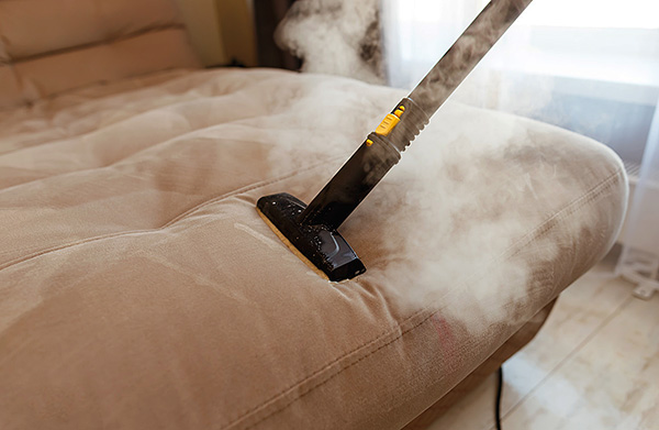 Hot steam from a steam cleaner is able to warm up the fabric to a considerable depth, effectively destroying ticks and their eggs.