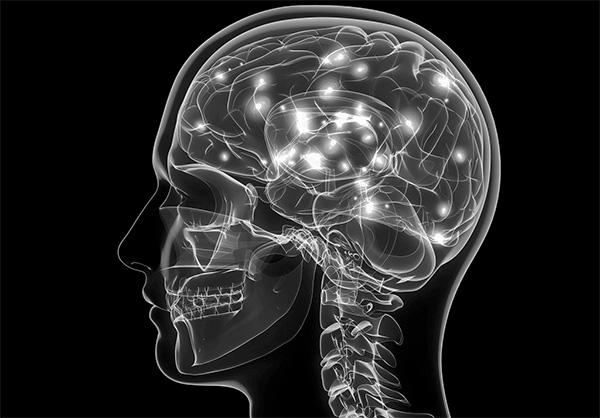 Ο εγκέφαλος είναι ο βέλτιστος χώρος για την αναπαραγωγή του ιού ΚΕ.