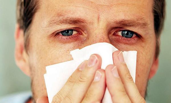 سيلان الأنف واحتقان الأنف والتمزيق هي الأعراض النمطية التي تحدث عندما يتعرض حساسية للأغشية المخاطية في الجهاز التنفسي العلوي والعينين.
